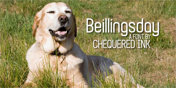 Beillingsday Font grass outdoor