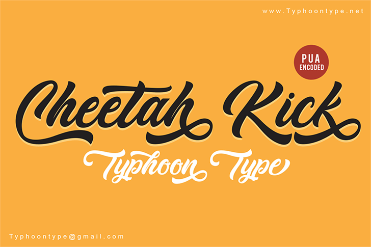 Cheetah Kick - Personal Use Font design typography
