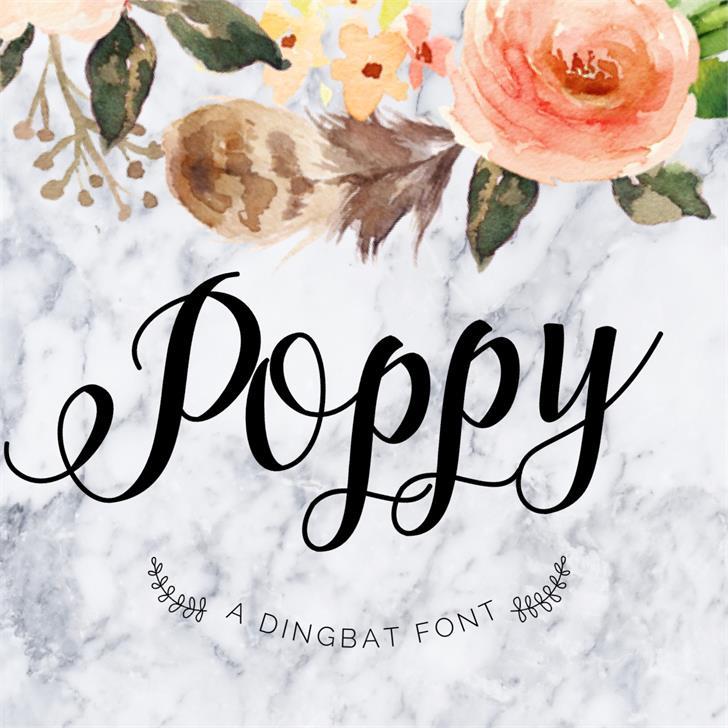 Poppy Font drawing sketch