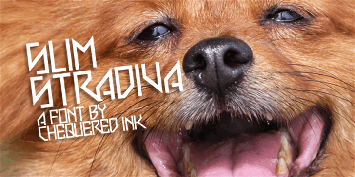 Slim Stradiva Font dog brown