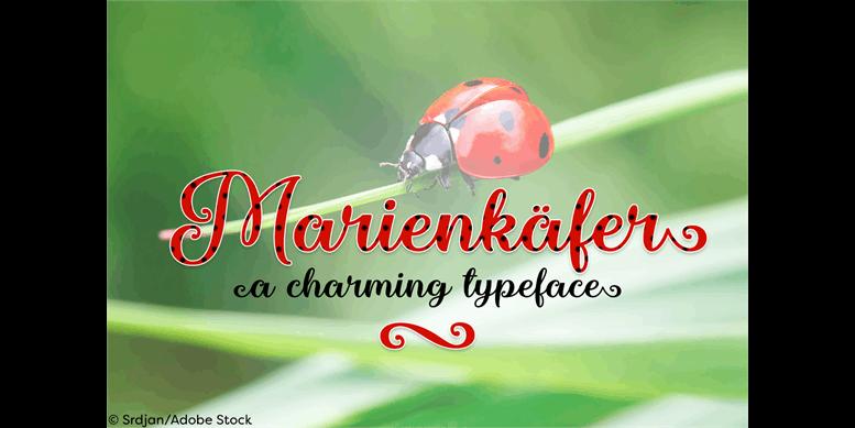 Thumbnail for Marienkaefer