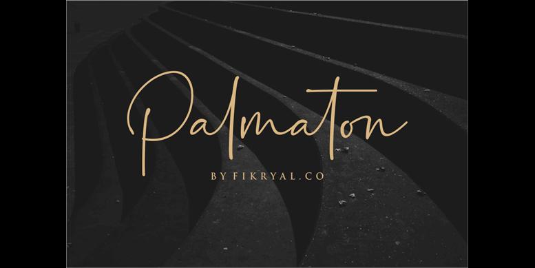 Thumbnail for Palmaton