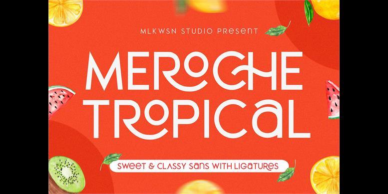 Thumbnail for MEROCHE