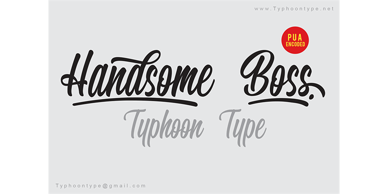 Thumbnail for Handsome Boss - Personal Use