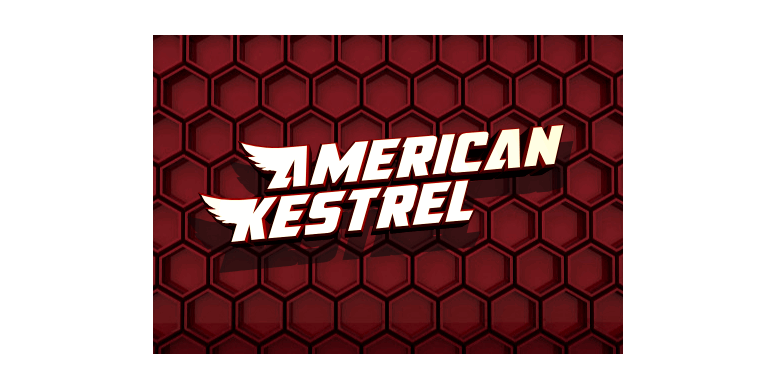 Thumbnail for American Kestrel